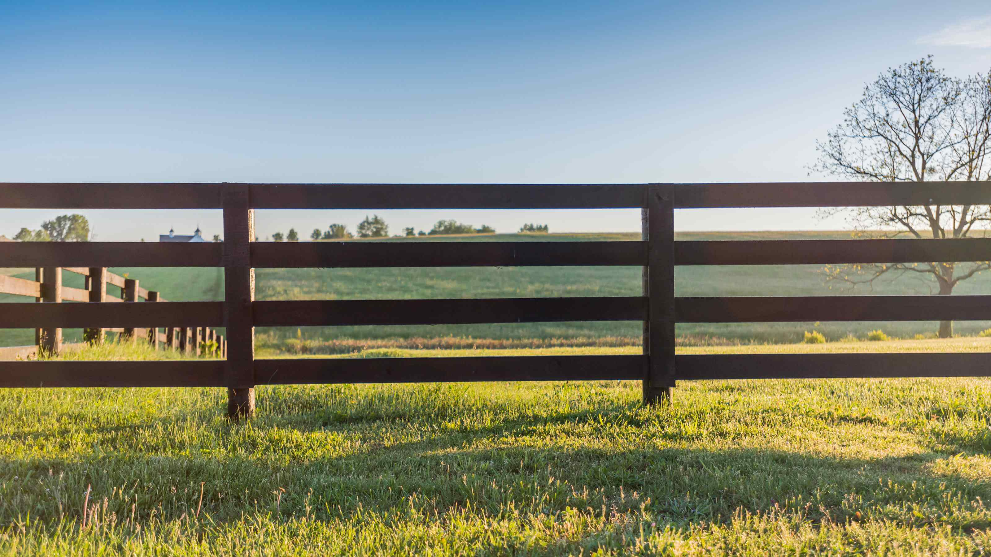 Field and fence - Horse Barns of Virginia